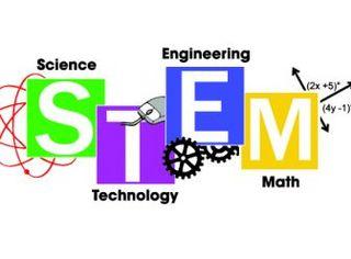 STEM family